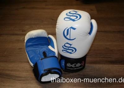 Boxhandschuhe blau
