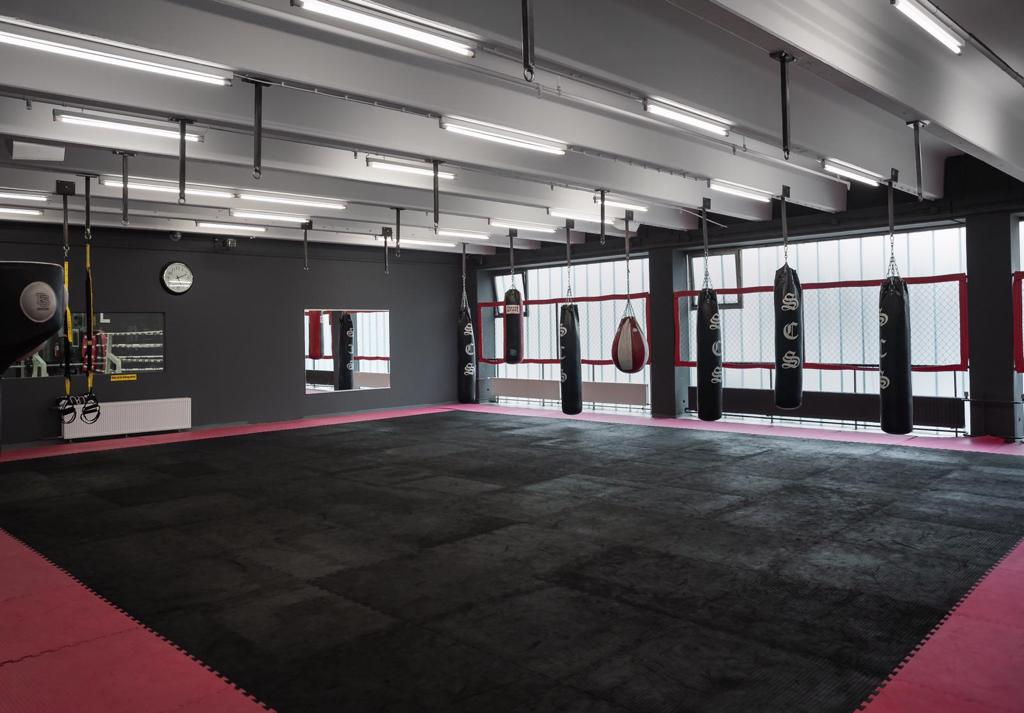 SCS Studio mit Boxring